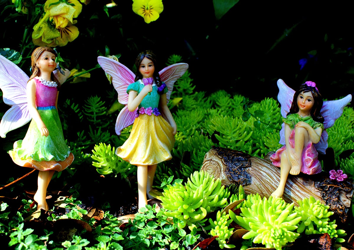 How to Make Your Fairy Garden Feel Like Pure Magic
